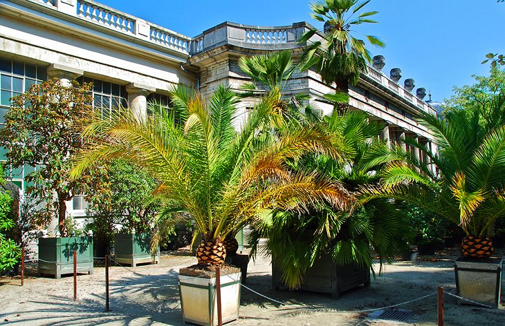 belgium-brussels-palmerie-at-chateau-royal-park-gardens