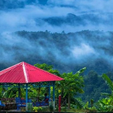 "Sajak Valley: Sajek Valley or Sajek Valley is a famous tourist destination in Sajek Union under Baghaichhari upazila of Rangamati district in Bangladesh. Located just north of Rangamati, the Sajek Valley has two neighborhoods - Ruilui and Kanlak. Founded in 175, Ruilui Para is located at an altitude of 1,620 feet. Kanlak Para is located at an altitude of 1,600 feet. Sajak Valley is also known as ""Rangamati Roof"".  Clouds, mountains and green everywhere in Saje. Sunrise and sunset can be given from here. You can trek from Ruilui Para in Sajek to Kanlak Hill. Kanlak is the highest peak of Sajak. On the way to Kangla, you can see the big hills of Mizoram border, the way of life of the tribals, and the clouds all around. Tribal festivals are held here at certain times of the year and various aspects of their culture can be enjoyed."