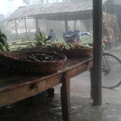 It has rained more or less all over the country including Satkhira and it has rained a lot in my own area. Roads are even submerged and I was sitting in a shop and I was sitting in the shop when it was raining to see what was inside a shop  The water was gushing around and we were many