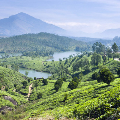 This tropical state in southern India is growing in popularity, though we still find it hard to understand why it hasn't always topped travelers' bucket lists. The best of the region lies in two distinct landscapes, one being the scenic tea and spice plantations of Munnar (also loved for its camping, trekking, and wildlife spotting). The Tata Tea Museum is a must for tea-lovers looking for more on tea history and production. Kerala's other (and arguably more famous) region is its backwaters, a network of lagoons linked by canals fringed with palm trees, stilted villages, and rice paddies. The easiest way to take it all in is by houseboat, which meander their way downriver and make for a seriously relaxing sojourn.