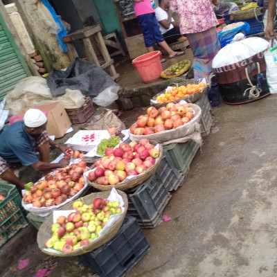 The picture shows that there various kinds of fruits in a fruit shop. There are various kinds of fruits like pomegranate, apples, other fruits.  Selling fruits the man earns his livelihood.  He is affable, amiable and Humanitarian.  You will be immensely pleased immediately after seeing the picture.  Your heart will be immensely contented by the sight of it.