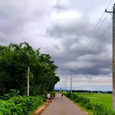 Suddenly when a road is passed and no matter how beautiful this road is, it is a very new road to us because we are very happy and happy that we got the opportunity to travel for the first time. This road is Pachgaon Kamalakanda Netrokona. Every year domestic and foreign tourists visit Bangladesh.  An old district of Netrokona Mymensingh division in the north is a very wonderful place here so it looks very nice friends you must visit this Kamalakanda so keep walking along this road A very wonderful banyan tree. Seeing this banyan tree, it is as if the soul is joining. Farmers are cultivating green fields in the open fields on both sides of the road and how nice it is to drive on the road.  If you like it, please like or comment, share and give others a chance to see Panchgaon Kamalakanda Netrokona