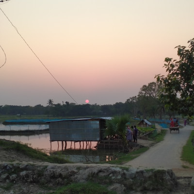 The picture shows that there are various kinds of natural beauty such as waterbody, street, trees and the setting sun. There is a stall in which there are various kinds of goods.  I as well as my bosom friend went there to enjoy the scenic beauty of nature.  You will get immense pleasure immediately after seeing the sight.  You will also be immensely pleased to see the picture.