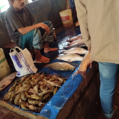The picture presented there is captured by me while going to Boro Bazar situated in Satkhira District .There are some fishes that are kept for selling to the customers .There are buyers of fishes and there is a fish monger who earns his livelihood by selling different kinds of fishes .I wholeheartedly believe that you will be able to buy fishes at a cheaper price and thereby you will be immensely pleased to maintain your family .I wholeheartedly wished to capture the picture and according to my desire I instantly captured the picture .