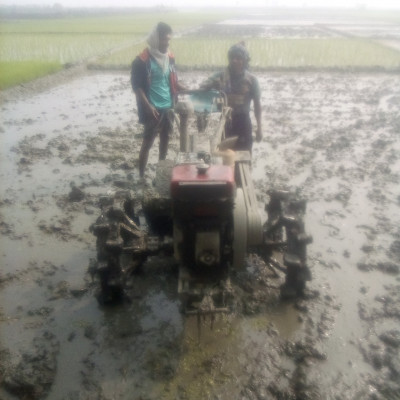 It is seen that we have to cultivate with plow. Now we are not able to see who is standing in the bill. We have to cultivate because of this provision. It is seen that all the mistakes are being cultivated.  In a beautiful wayStanding on top of the mud, it looks very nice. I think they are standing with a plow, which makes them feel very good. I hope you will also like to see it because it looks so beautiful.