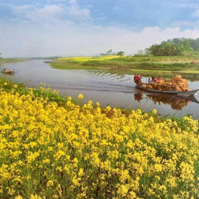Asalamalaikum friends, how are you, I hope you are all well, good evening to all. Good evening. The topic I will discuss today is to talk about the small meto river of Bengal in the language of the poet.  The cow crosses the car, the two sides are high, its dhalu, its cross is chic chic, where is the sand, there is no mud, the kashaban is full of flowers, it is white. Mother Bangladesh is full of green mustard.  What a beautiful sight to see a mustard field. Small dinghies sail along this small river. Fishermen catch fish, cows and goats eat water. Little boys and girls play.  Every city, port, ganj, bazaar etc. of the world has been built around the river.  Boats are an easy way to transport and communicate goods.  A pair of boats at very low cost to transport goods.  The one who sails the boat is identified as the boatman.  Once upon a time there were sailing boats.  Engine-powered boats have taken its place in the evolution of time.  In the middle of the river, fishermen fight the waves and catch fish.  On the banks of the river, the leaseholders are seen collecting money as tax.