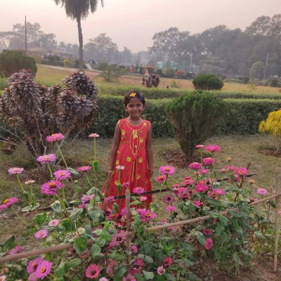 Friends, I have given you a beautiful post, it is a picture of a park in Comilla district. It is a very beautiful picture, every person will like it, because there is a huge field here and in this field you can see different kinds of trees, big trees can be seen.  I can also see different types of deciduous trees, pink flowering plants and many flowers.  There is a picture of the sky and a small child is standing. The leafy trees inside the field are very beautifully arranged. Besides, the flowers of different colors look so beautiful. Anyway, this picture or post is very beautiful.  It is everyone's favorite. The girl is wearing a red dress and it is also very beautiful.