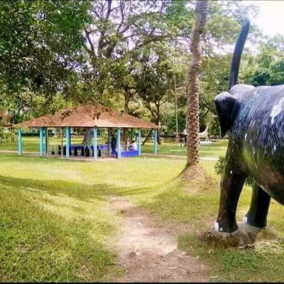 You can see the picture of a beautiful park. This part is in Binodia Park in Bangladesh for decades and gets information but grew up in a very pleasant environment but there are different types of machines and this messenger but mechanically can give people pleasure and entertainment  I hope you like it and if you like it subscribe to our channel see a roofing machine here.  There are many people working here.  We see that the machine is a very big machine.  A lot of people work here and without poor people they do this work because it is very hard work.  The machine came brother we know a lot of people work It can be seen that there are a lot of people standing here who are basically busy working on this welding machine With puti, this work is done one by one.  We can see that the small works in the rural areas are done by welding machines.  Because of the modern machinery, the machines made by human hands are working.  Here we can see that if we work hard