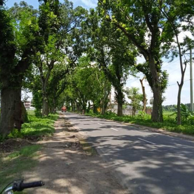 This is our Khulna-Jhenaidah highway.  This road has only two lanes.  But lots of cars run.  Those who ride bicycles or motorbikes know how difficult it is to get on this road.  The road will be four lanes but may be too late.  Until then, will road accidents continue to happen?  Even if it is 3-4 feet on both sides of this road, it should be made of brick.  Like ditches on both sides of this road, you can't get off the road in an emergency  Make demands from everyone's private place for safe roads.  We all walk on this road all the time.