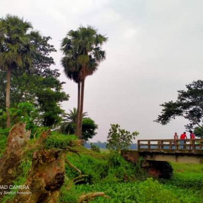 Natural beauty, the picture shows a small bridge, next to the bridge there are many kinds of trees, big and small, including palm trees, the sky is decorated with colorful colors.  The village is surrounded by green forests.  The amazing natural diversity has enveloped rural Bengal.  The beauty of the village is unsurpassed as far as the eye can see the green fields and the splendor of the saunali crops.  The small houses are like a blue of peace.  The beauty of water lilies or lotuses floating in the water of ponds or beels fascinates people.  Eternal village is fascinated by this breathtaking beauty of Bengal.  The village is the nest of shade, the nest of peace, the pulse of the Bengalis with the rural areas.  The picture was taken from Balitha village. I hope everyone will like the picture.  Thanks.