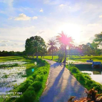 You can see here a beautiful landscape picotee . This picture looks very beautiful.  This picture was taken from Gobindpur village in Satkhira district.  Here you can see a picture of a street. It looks very beautiful. Here you can see some small green grass on the side of the road.  And I can see that there is a palm tree and a  trbanyanee. It looks very beautiful.  We can see more. There is another road on the other side.  There is a small kalboat on the road.  We can see that there are empty fields on both sides of the road.  I can see the water here.  And I can see more white clouds around.