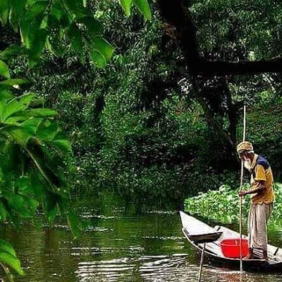 Here is a scene where one can see a boat floating on the river that flows past the Sundarbans and holding a bamboo stick in their hand to catch raw fish nearby.Uncle basically admits mother in this way they influence life