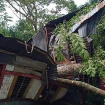 Jessore In Chandpur village of Chaugachha sub-district of Jessore, mother and daughter were killed when a tree fell on their house in the aftermath of cyclone Ampan. A huge tree fell on their house during the storm.  It is very sad for us that this incident happened as a result.