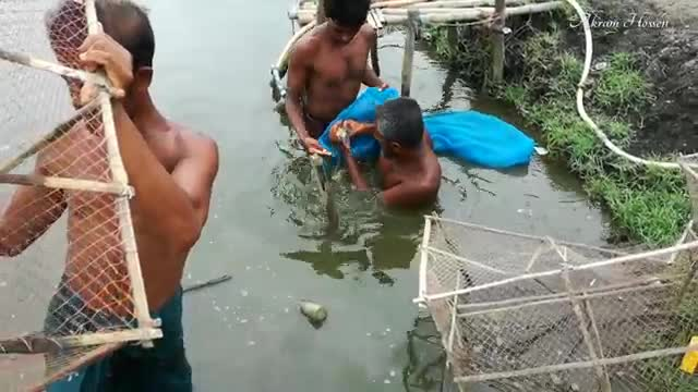 Stunning video of Bangladesh