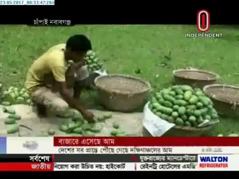 In some districts of Bangladesh, mango has been produced in large quantities