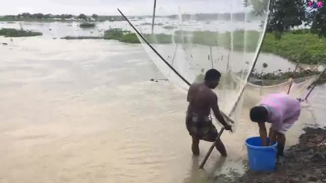 most_amazing_fishing_in_flood___flood_in_Bangladesh.