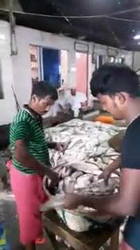 The market shelling hilsa fish.