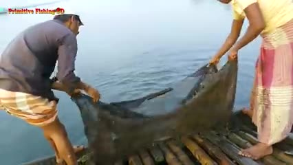Best_Net_Fishing।_Traditional_Cast_Net_Fishing_in_River।_Fishing_With_Cast_Net.
