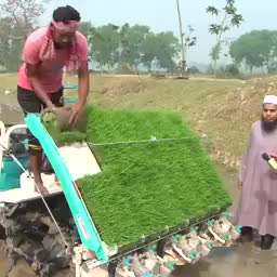 Bangladesh agriculture technology.