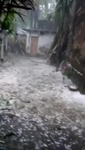 Jessore in the northern part of Bangladesh has received a lot of hail.