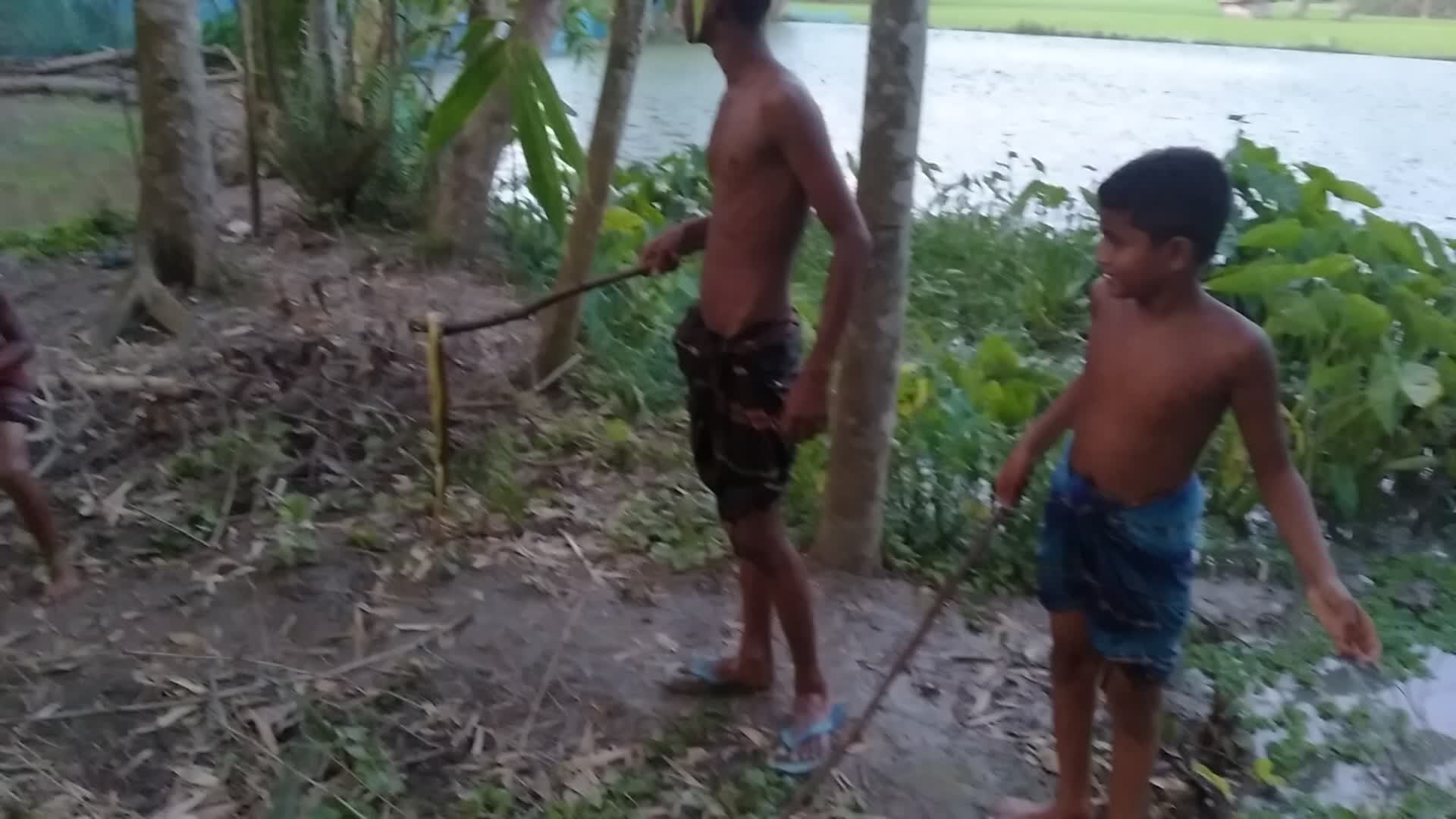This video shows the boys playing with snakes.