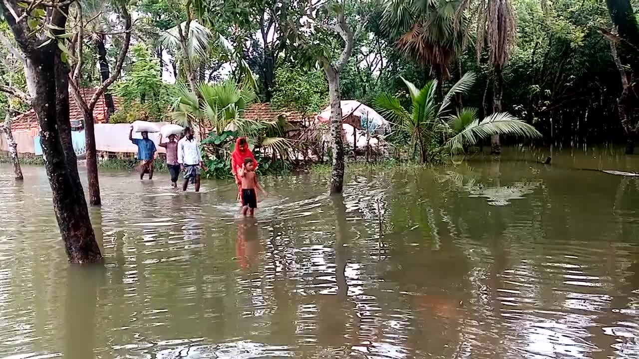 Hello friends, you are seeing a flood prone area.  It has entered most of the villages of Duniya Union in Satkhira district of Bangladesh this time. People are in a lot of trouble.  And sadly, those who have to live their lives without food have to move. Let's all stand by them.