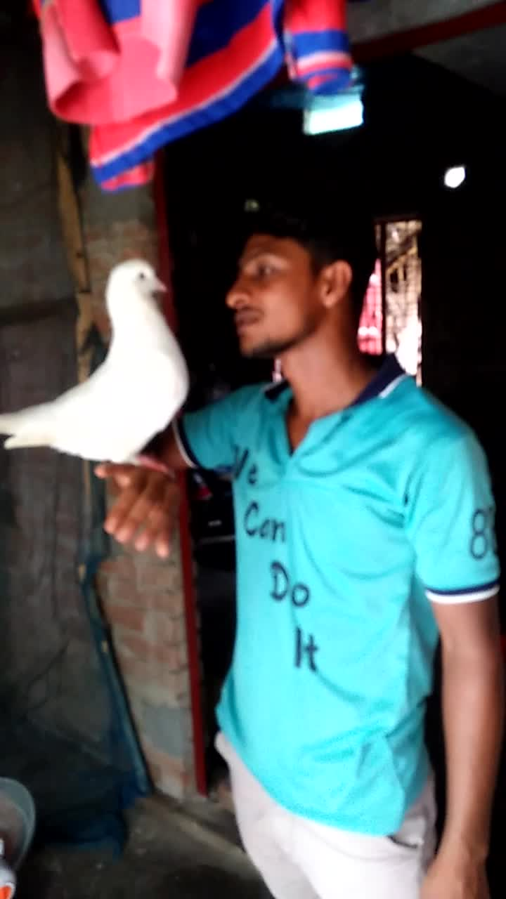 My own pigeon farm My home Govindapur My name is Md. Hasan My pigeon farm has about fifty pigeons A poem inside it