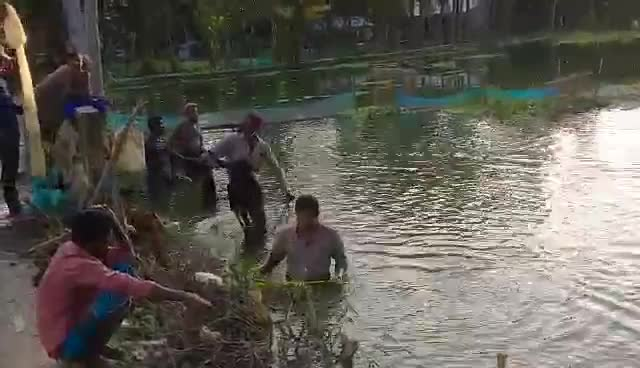 See how fishermen cast their nets in this video.