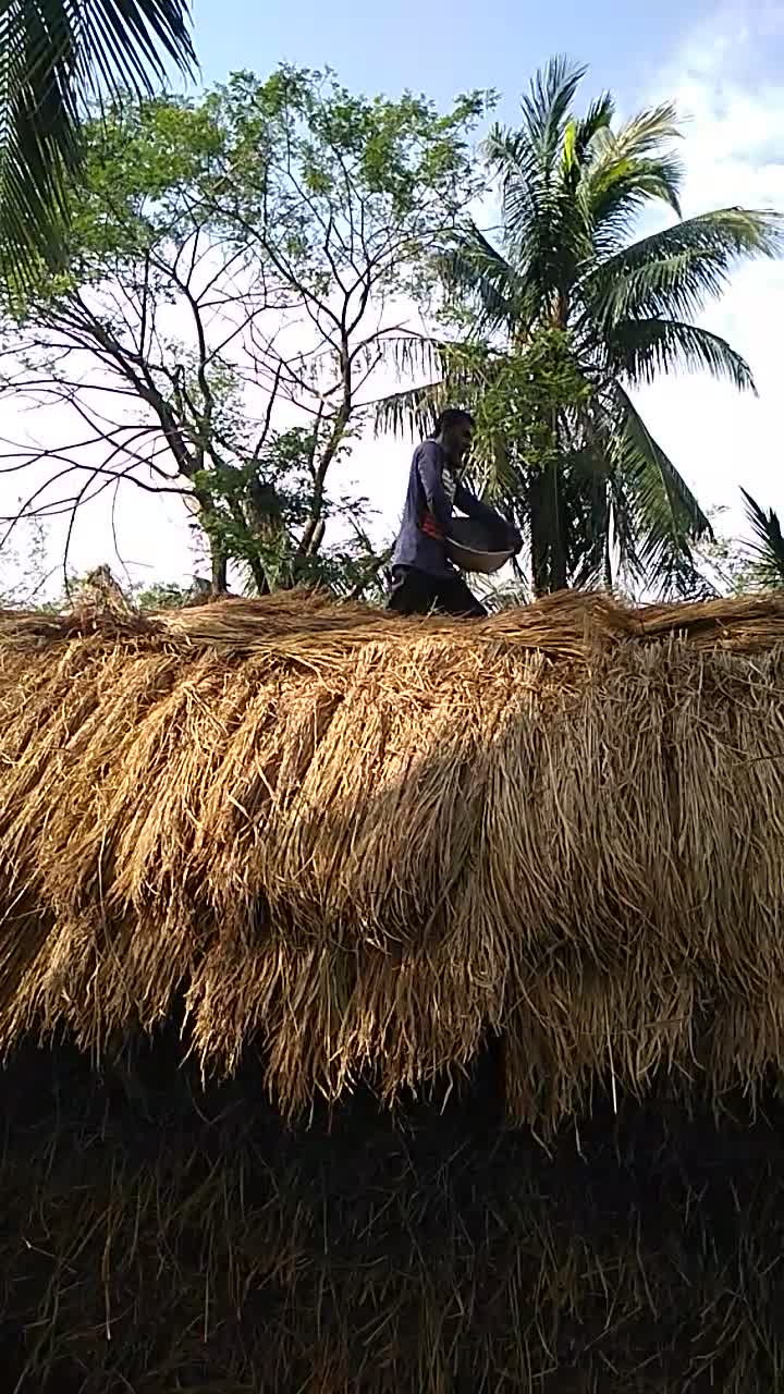 A video of a haystack