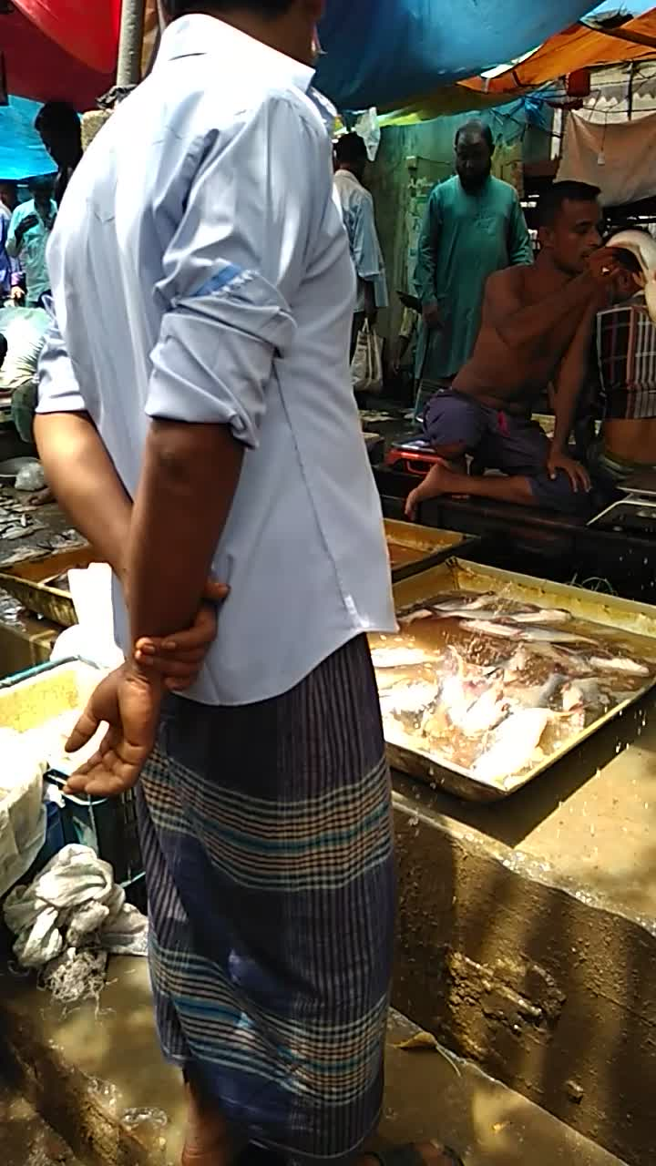 A fish market video