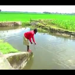 You will see a wonderful rural fishing scene here. Don't miss it. Watch the whole video.