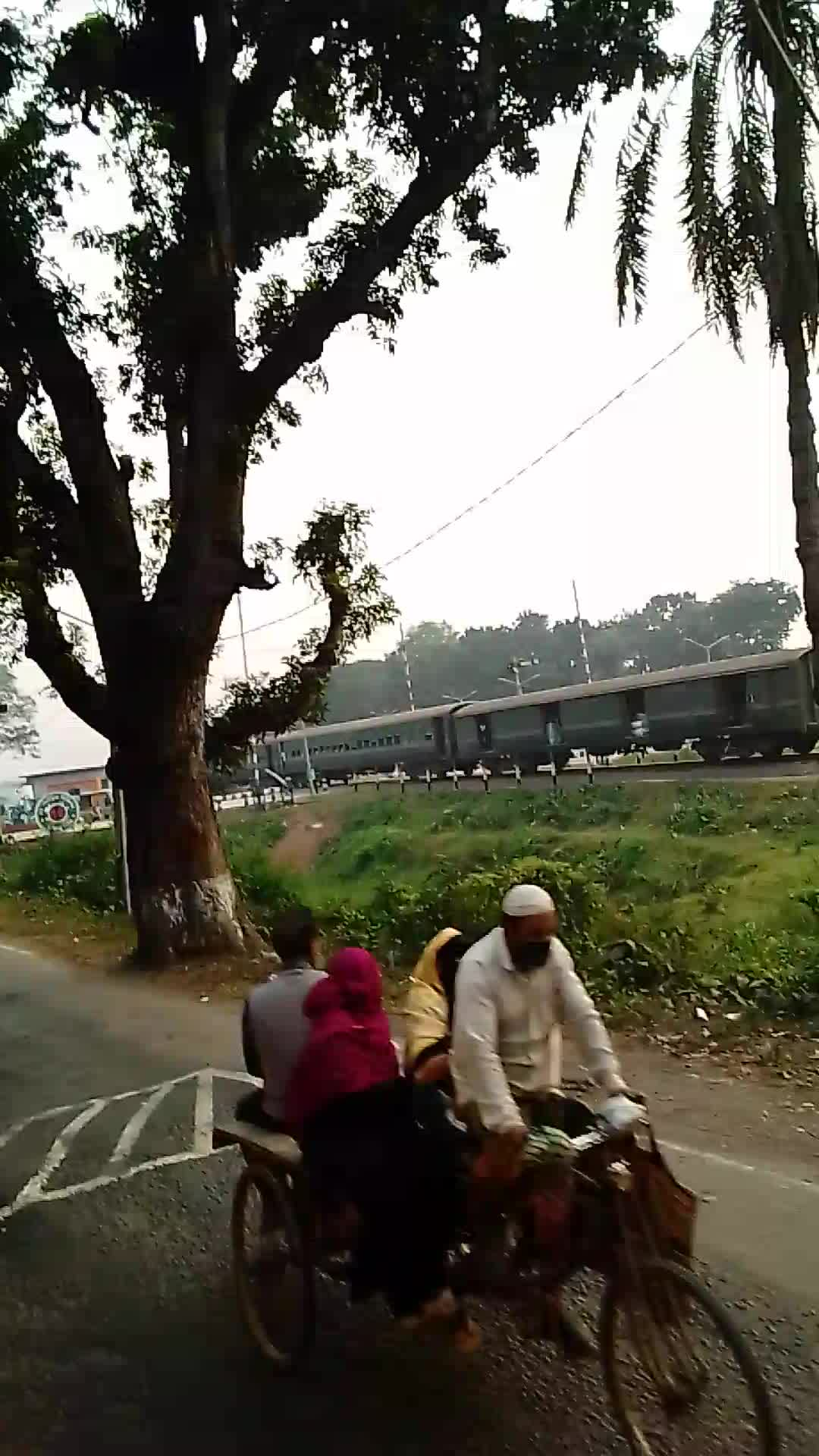 The scene of the train running in Jessore.