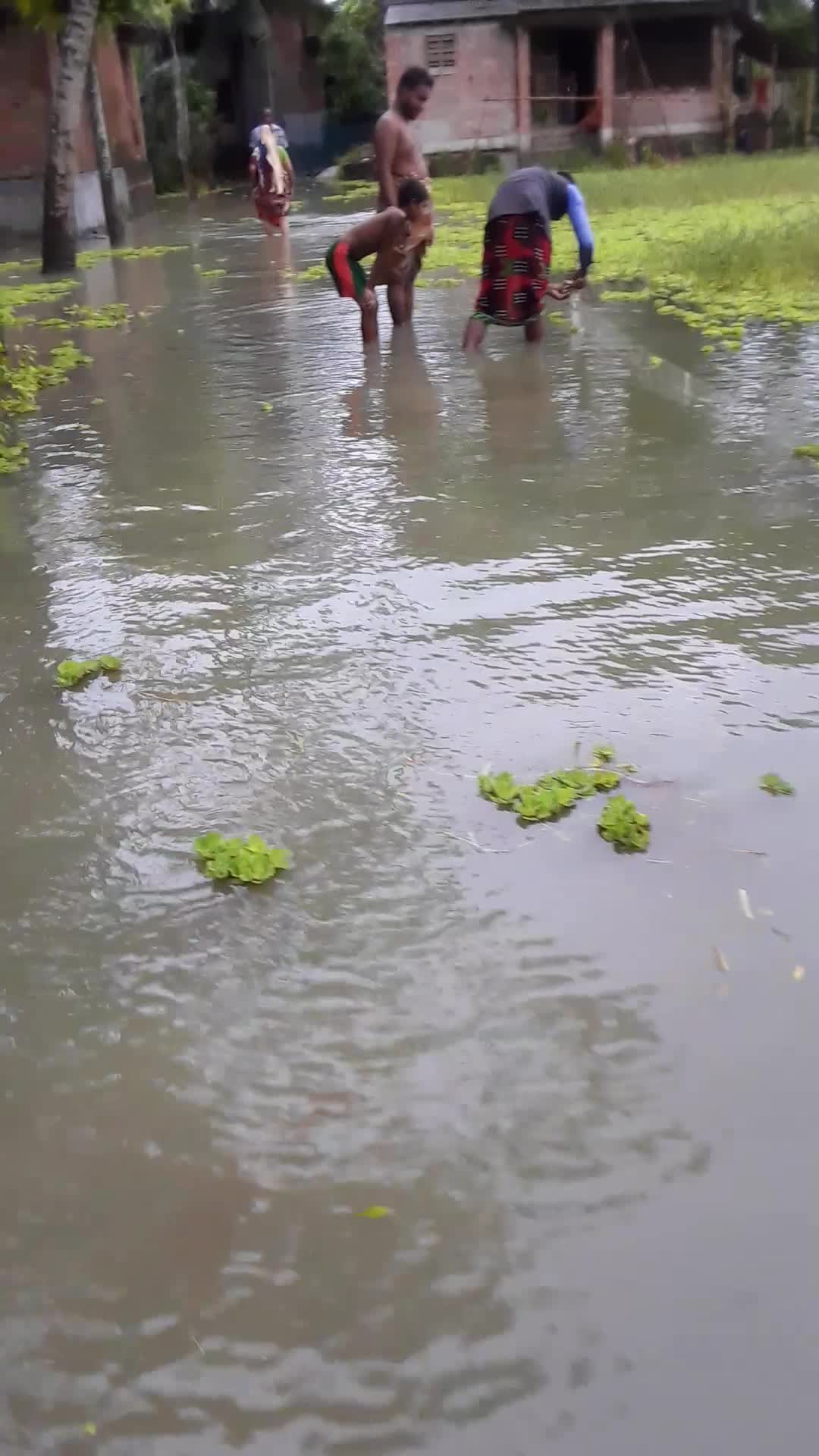 A video of the wild flooded area.