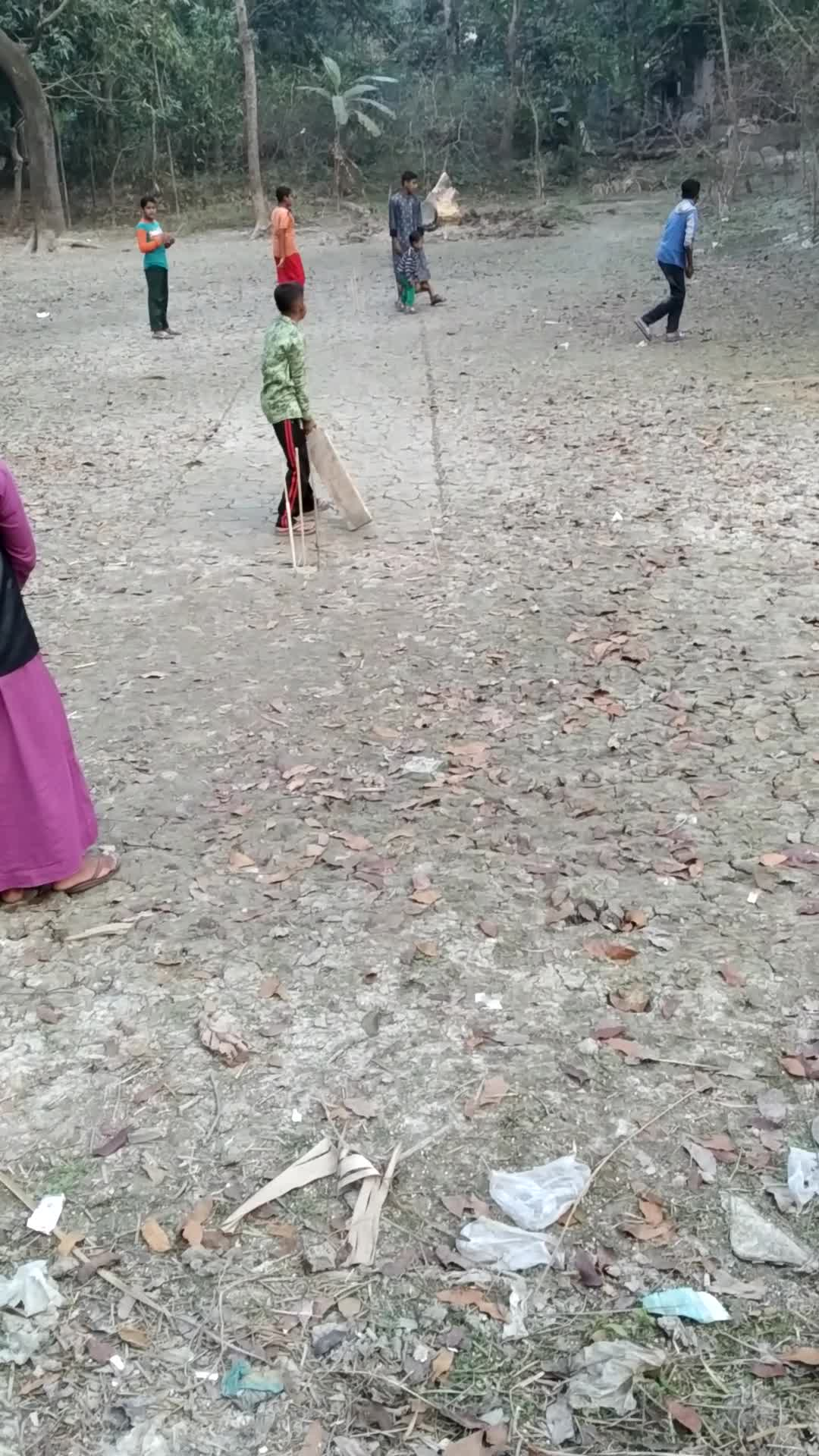A video of a cricket match