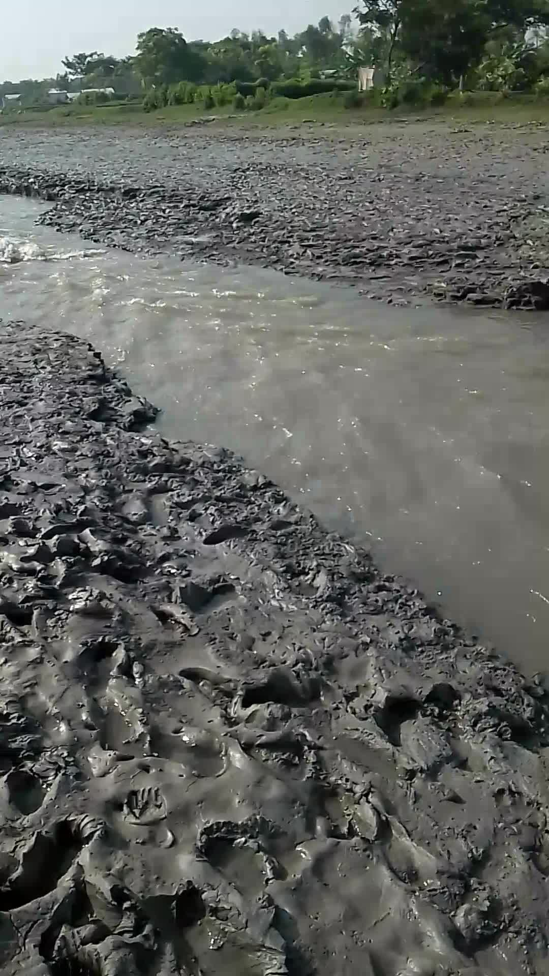 River erosion in the southern region of Bangladesh