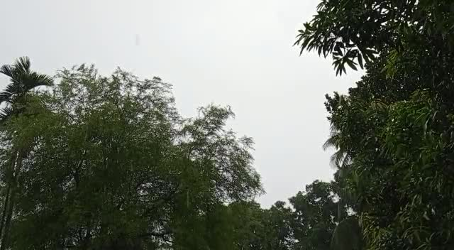 It is a raining moment and feeling happy