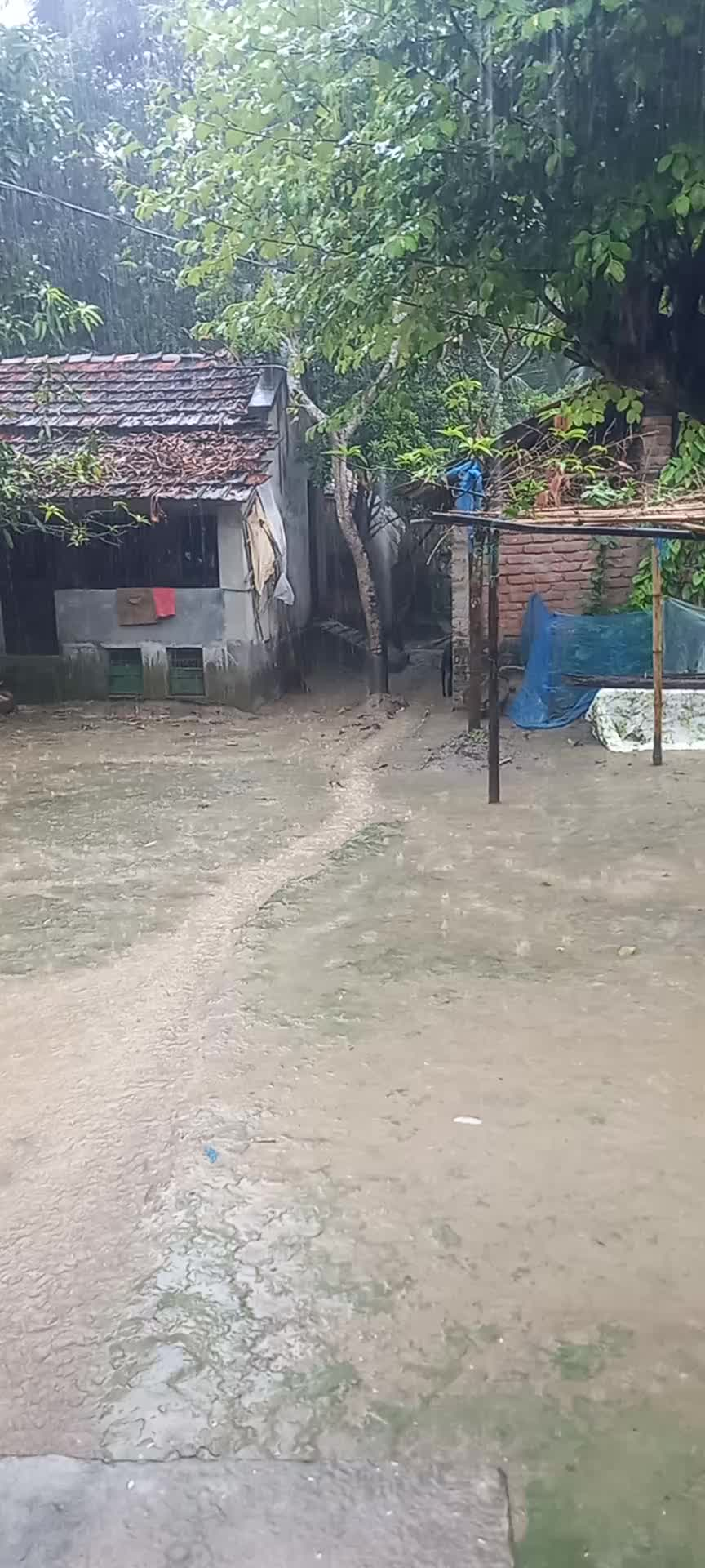 A scene this afternoon There is a lot of water in Bangladesh today This place is a lot of water here in Satkhira district.