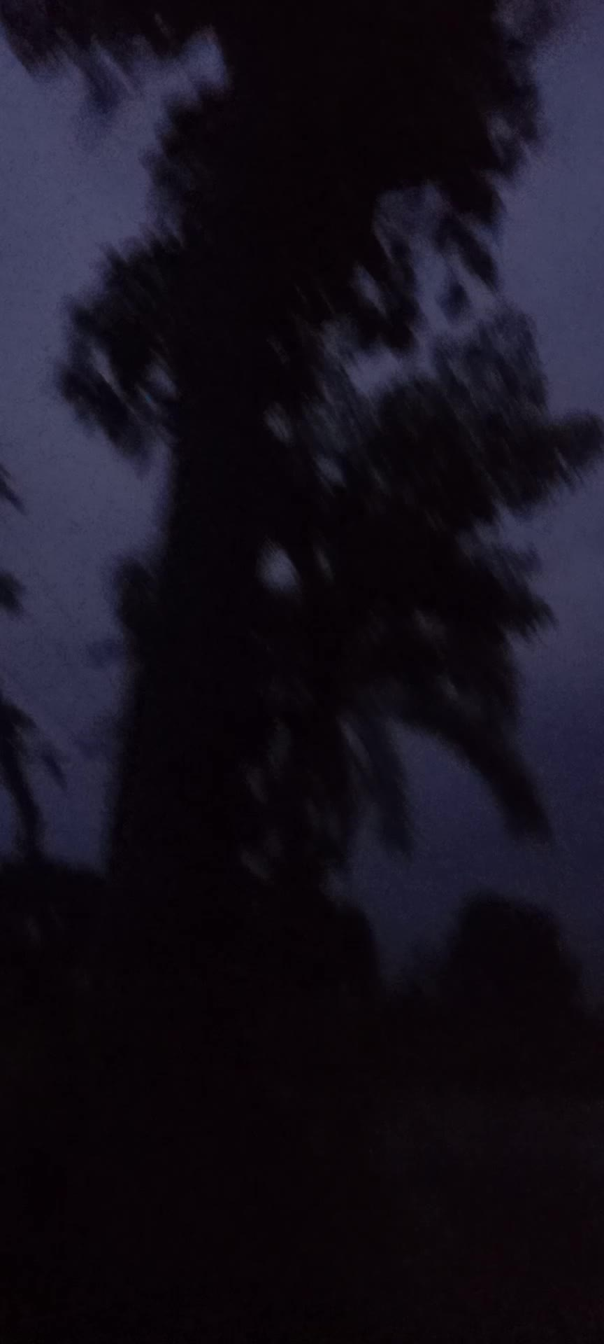 I was doing a video tonight when friends were coming together in the moonlit light moonlit night.