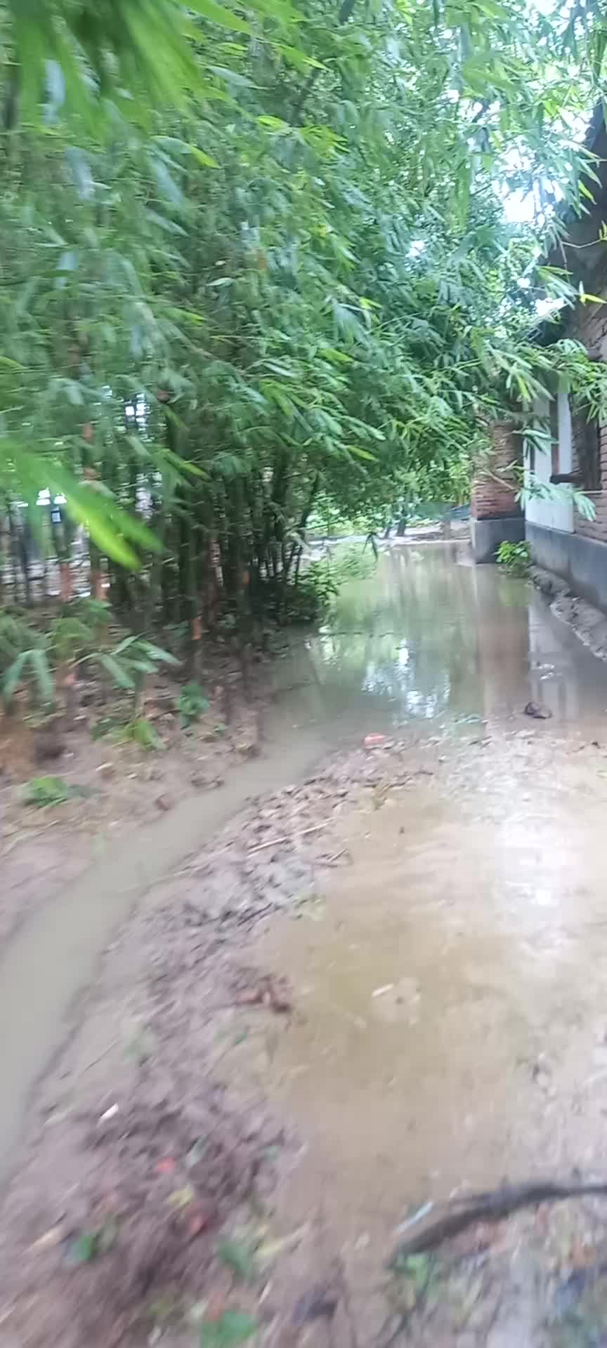 The video of the backyard of our house shows you that the backyard of the house is all submerged, the rivers and canals and the landscape of nature are all submerged.