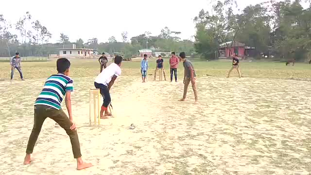 Cricket on the banks of the Jamuna