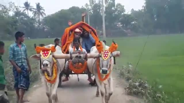The bullock cart is now just a memory